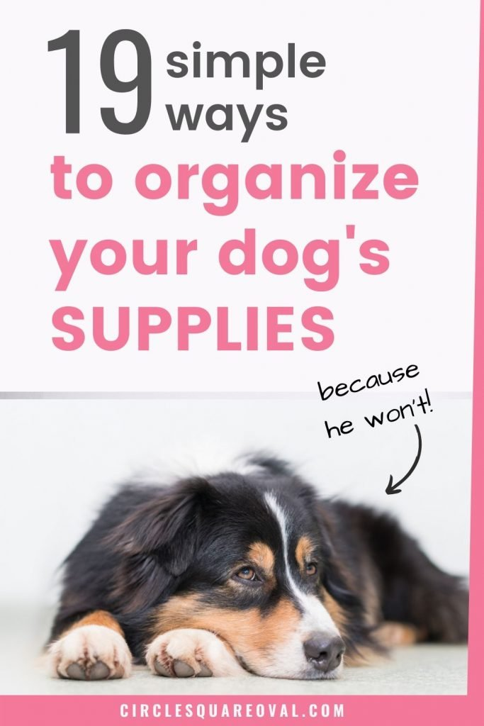 simple ways to organize dog supplies