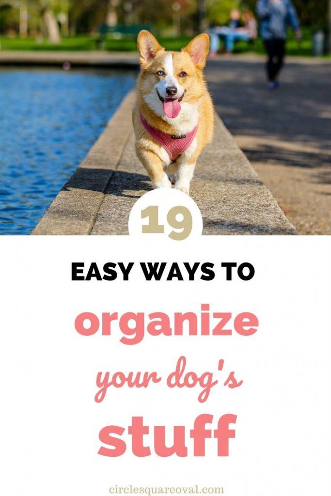 ways to organize dog supplies