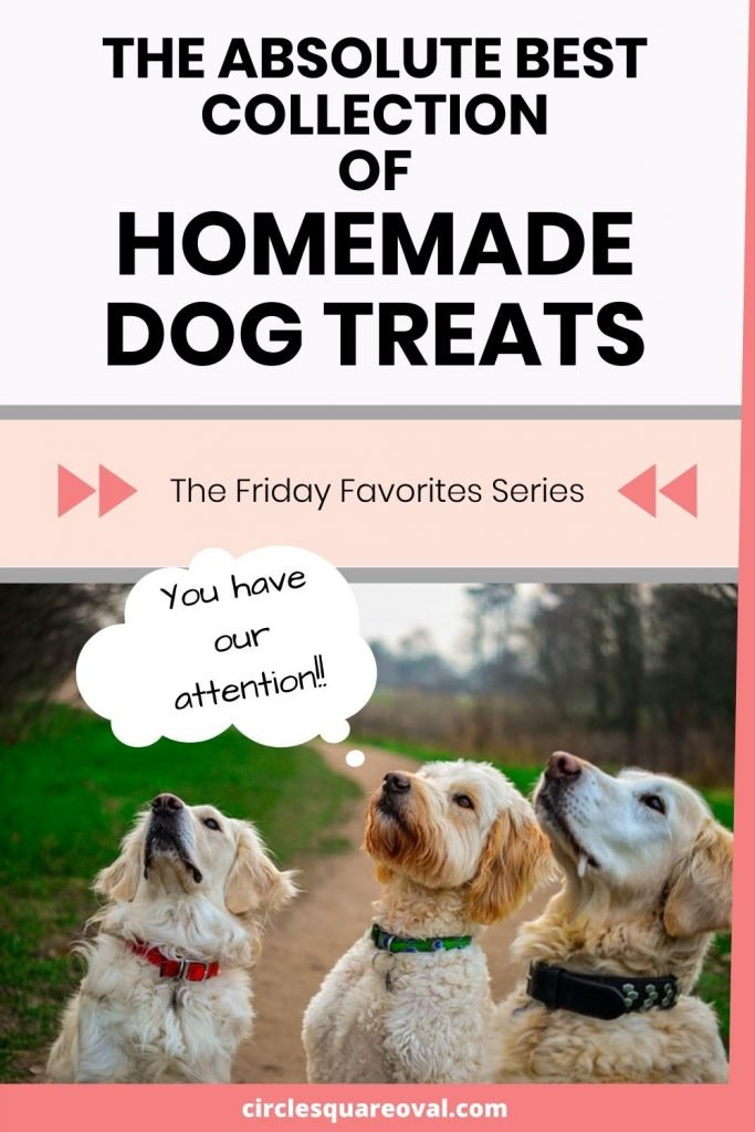 best collection of homemade dog treats