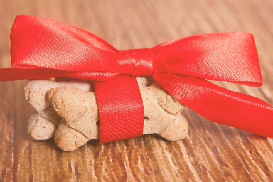 dog treats wrapped in red blow