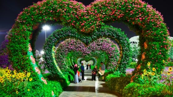 Dubai Miracle Garden virtual tour