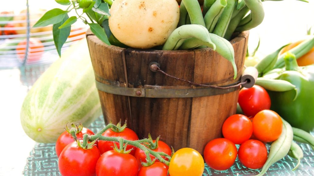 harvest of fresh vegetables from the garden in a large wooden bucket